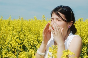 What Does My Hay Fever Have To Do With My Gut?