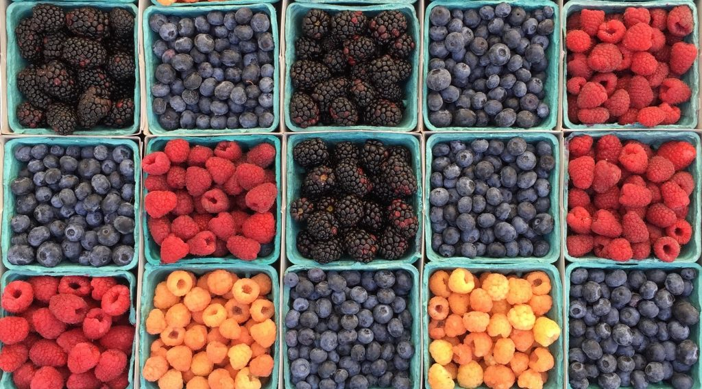 Achieving a healthy food balance with berries